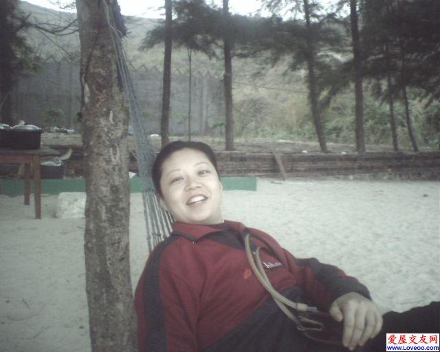 乖兔2008影集