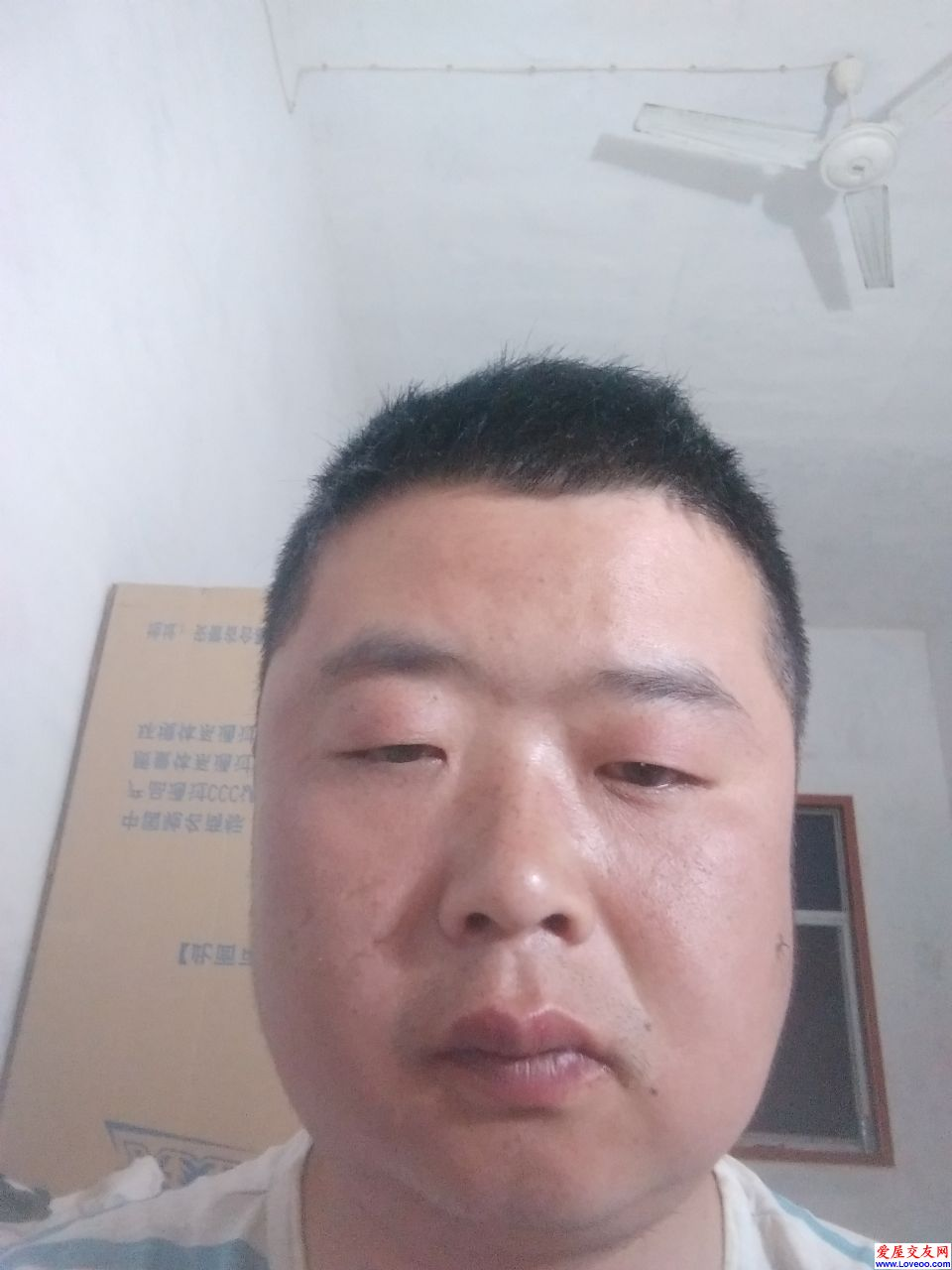zhangqiang影集