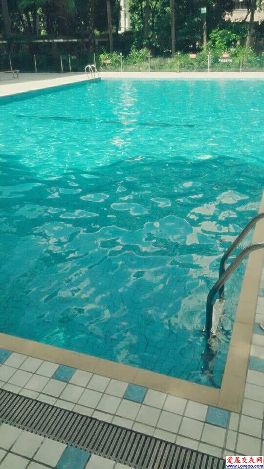 游泳池半边有阴凉下午游泳也不晒