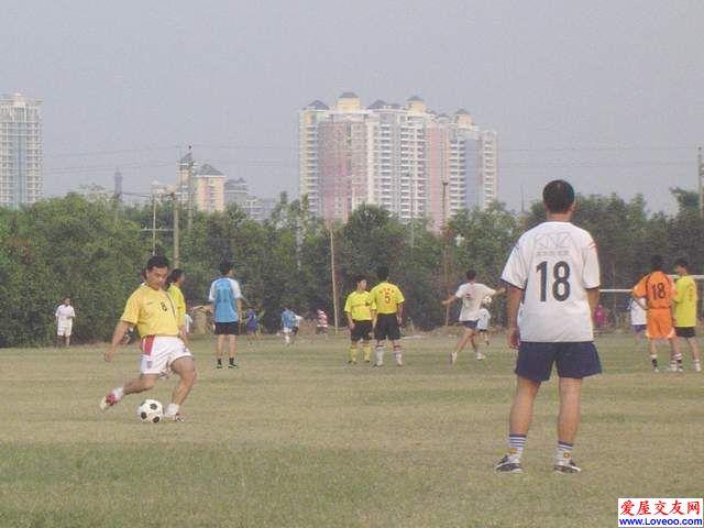潘哥 - 自由球