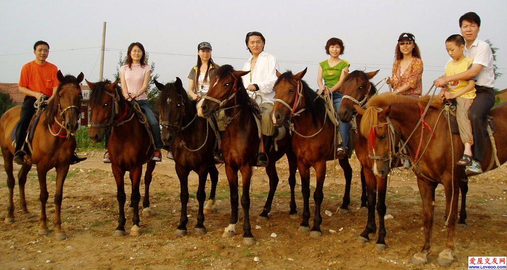 京西太师庄骑马活动